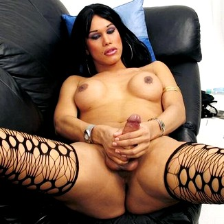 Shemale Tranny Transsexual